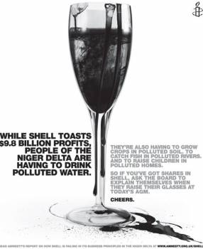 Amnesty shell.jpg