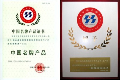 China top award.jpg