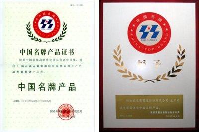 China top award.jpg