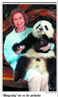 ¿Te alegras de verme o es que llevas puesto un panda?