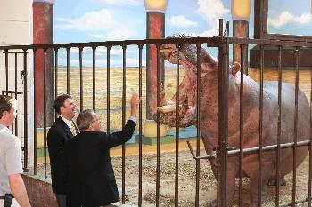 Internet tampoco es un hipopótamo
