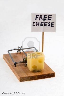 trampa queso.jpg